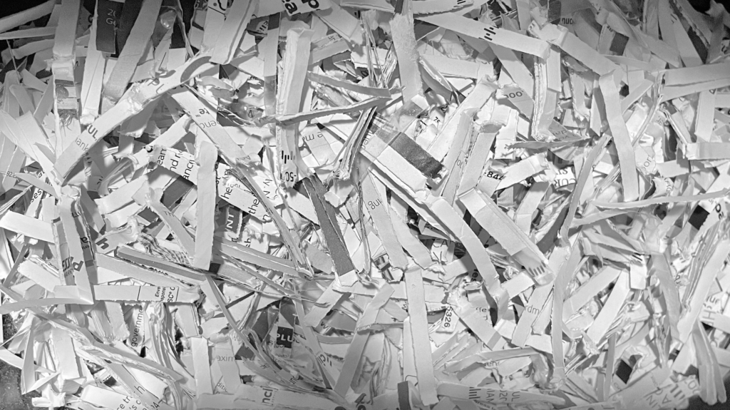 The Song of the Paper Shredders   Caracas Chronicles