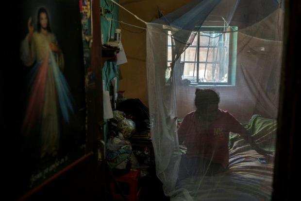 Mosquito nets handed out in places like Barcelona Venezuela to protect people from disease-carrying...