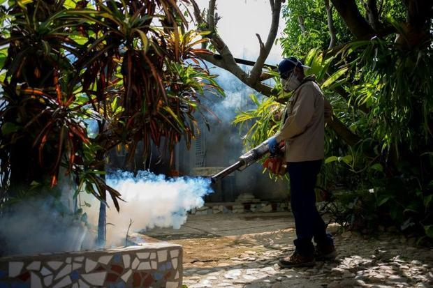 Fumigation which kills mosquitoes and their larvae is also an effective preventive measure agains...