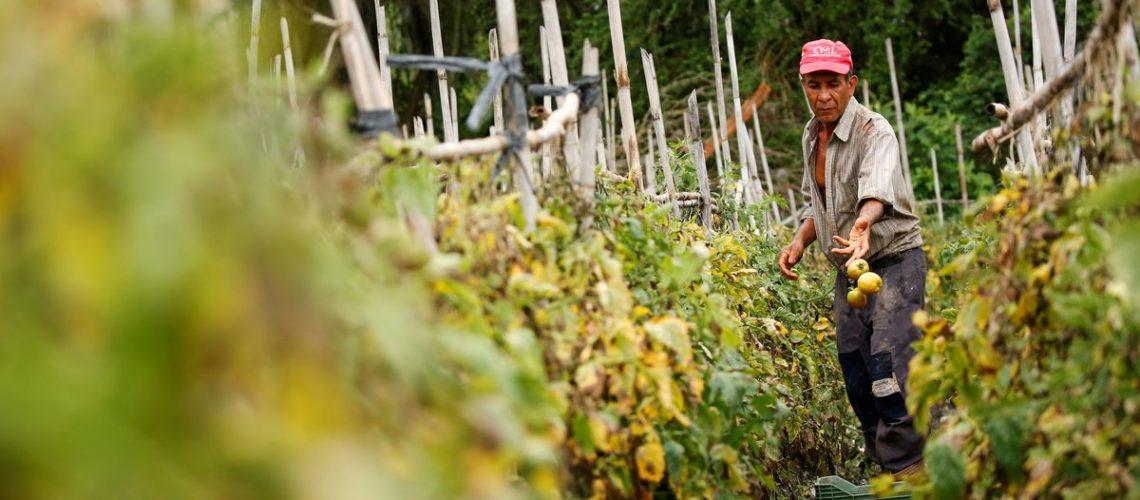 Diesel shortages paralyze Venezuelan farms, prompting sanctions debate