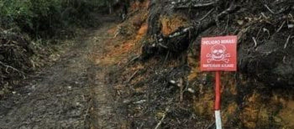 Colombia's Guerrillas Bring Landmines to Venezuela